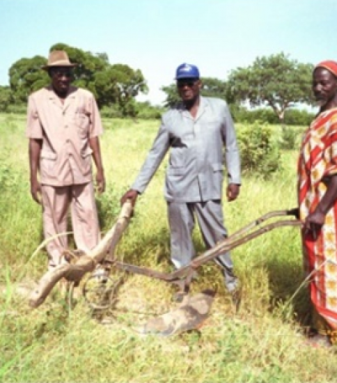 [GOOD PROJECT] [MALI] Study on the Capacity Building Programs for the Community-based Prevention of Desertification in South Region of Segou