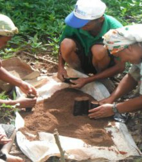 [GOOD PROJECT][MADAGASCAR] Stop Land Degradation while Improving Livelihood of Local Communities Through Equal-Opportunity-for-All Approach