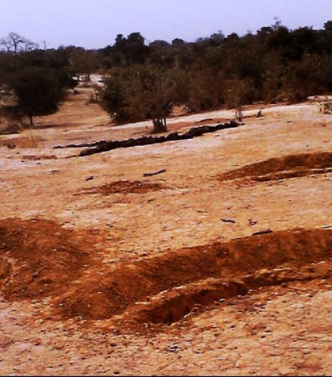 [SENEGAL] Land Degradation and Good Practices in Senegal