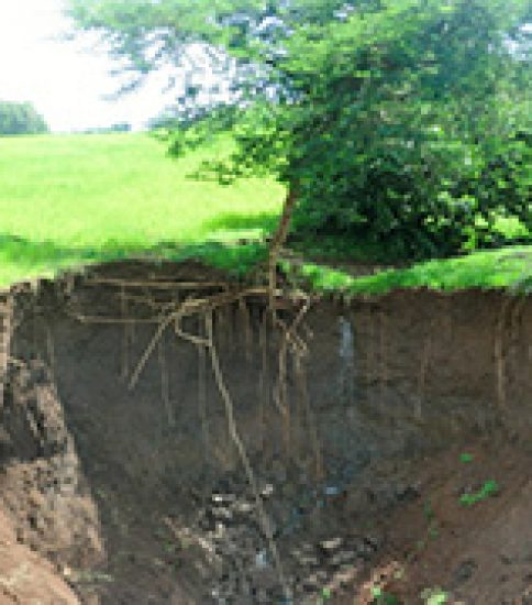 [ETHIOPIA-SATREPS] Development of Next-generation Sustainable Land Management (SLM) Framework to Combat Desertification