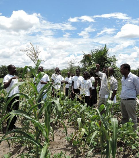 [MALAWI-JICA]Institutionalisation of the Equal-Opportunity-for-All Approach for the Sustainable Management of Surrounding Natural Resources in Malawi